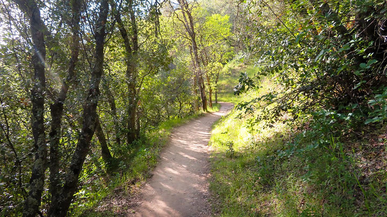 Magnolia RanchMagnolia Ranch Trail