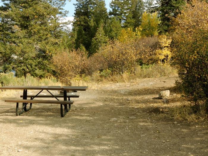 Elliott Creek CampgroundSite 9