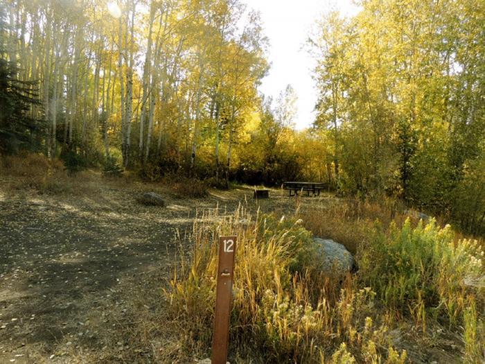 Elliott Creek CampgroundSite 12