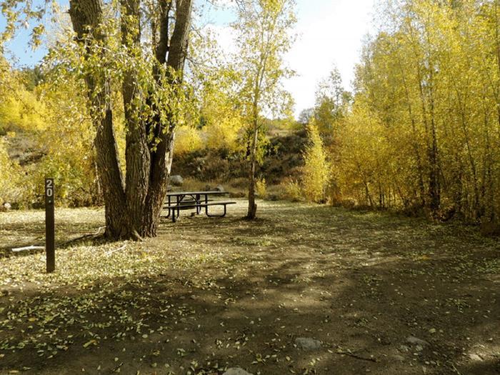 Elliott Creek CampgroundSite 20