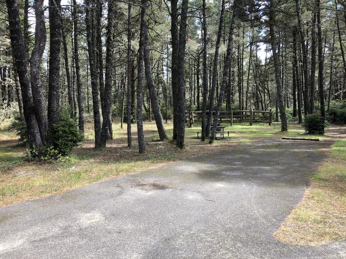 Wild Mare Campground Site #3