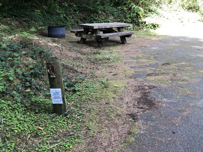 Tahkenitch Campground Site #1