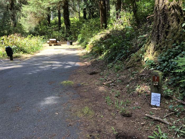 Tahkenitch Campground Site #7