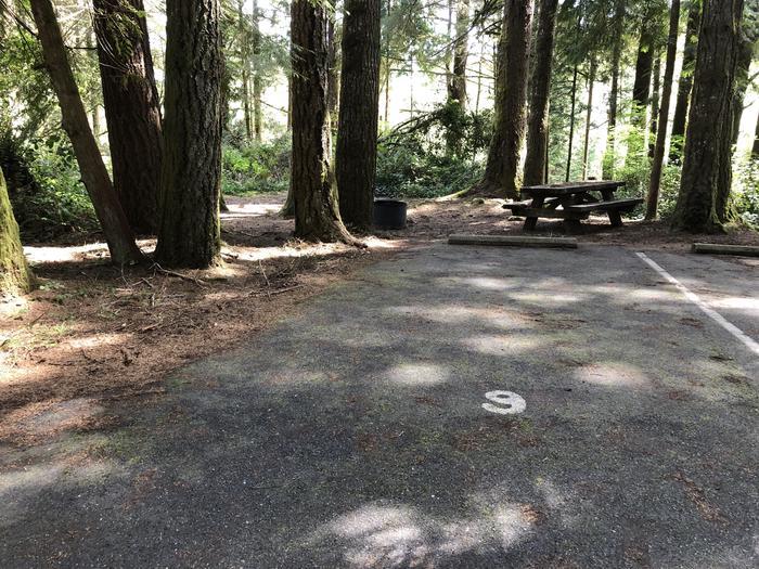 Tahkenitch Campground Site #9