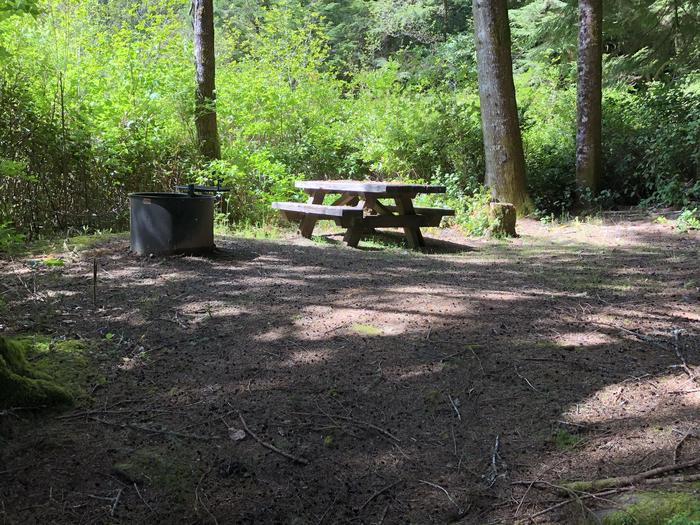 Tahkenitch Campground Site #21 pic2Tahkenitch Campground Site #21