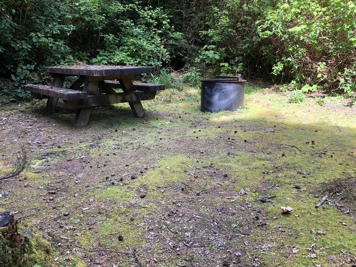 Tahkenitch Campground Site #23
