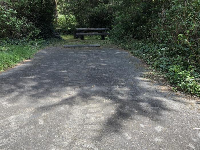 Tahkenitch Campground Site #27