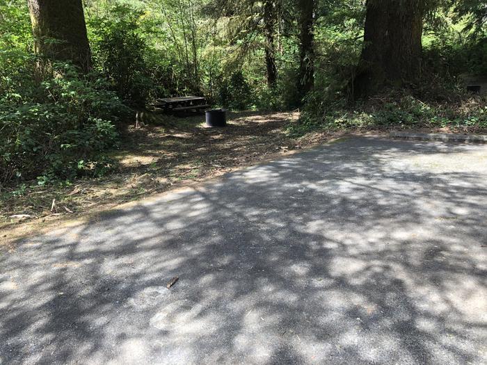 Tahkenitch Campground Site #30