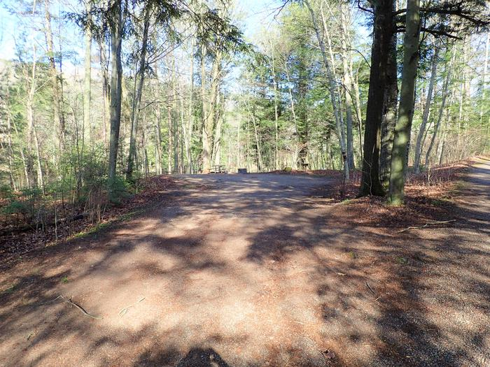 Site P3 driveDriveway for Spearhead Point Site P3