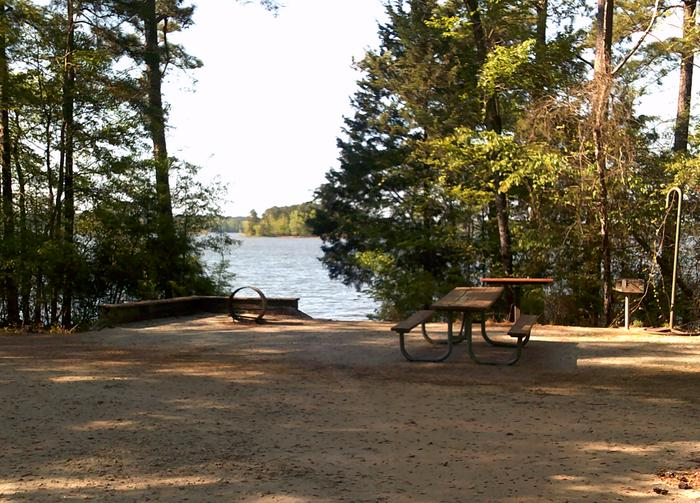 Site 35 Picnic table and fire ring