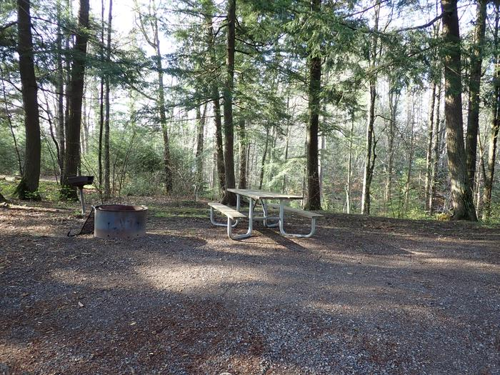 Site P13Picnic table and fire ring for Site P13
