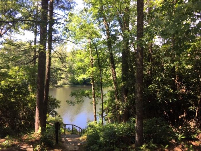View from Picnic Shelter
