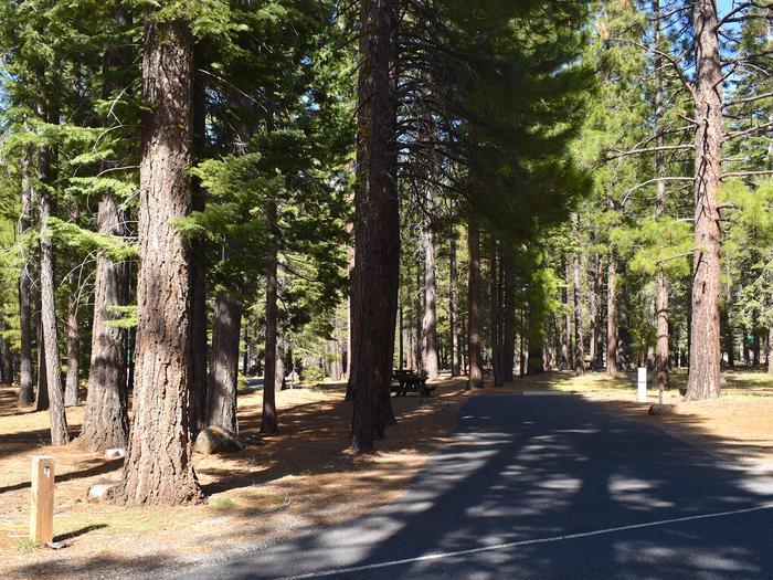 Site #4Merrill Campground, Site #4