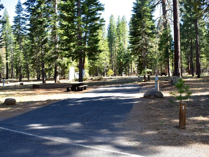 Site #9Merrill Campground, Site #9