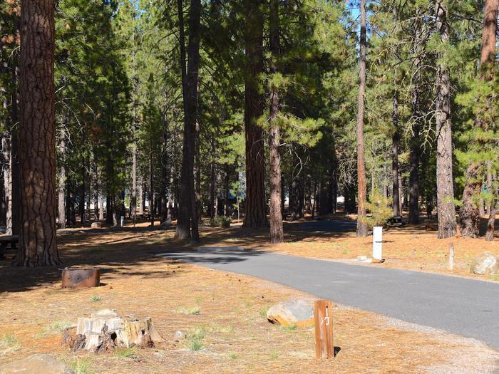 Site #10Merrill Campground, Site #10