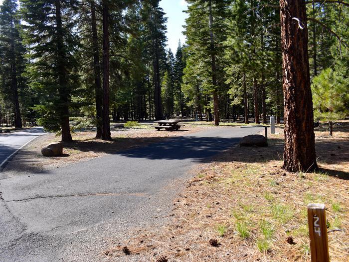 Site #24Merrill Campground, Site #24