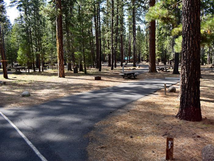 Site #99Merrill Campground, Site #99