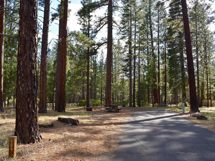 Site #104Merrill Campground, Site #104