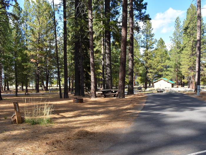 Site #110Merrill Campground, Site #110
