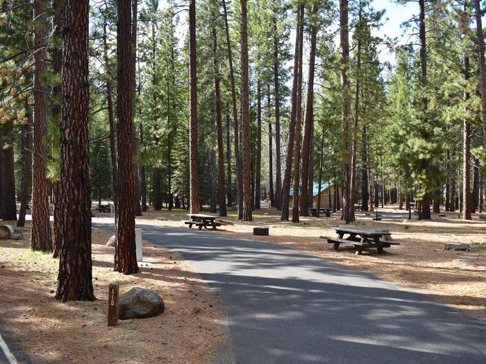 Site #118Merrill Campground, Site #118