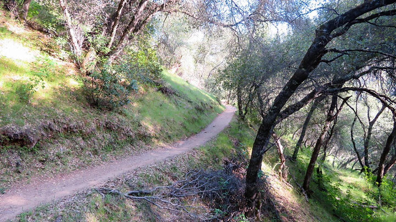 Magnolia RanchMagnolia Ranch Trail at Hastings Creek Bridge