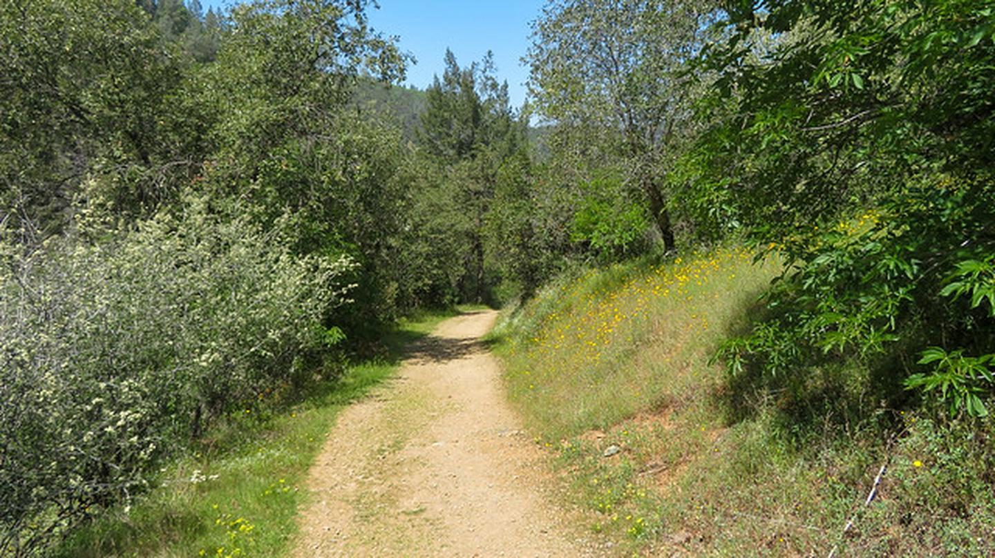 Old Flume Trail