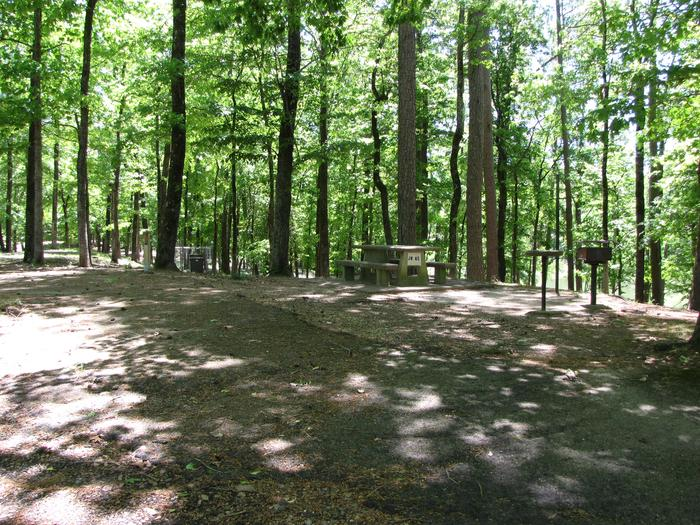 Campsite 65Jim Wylie campsite # 65