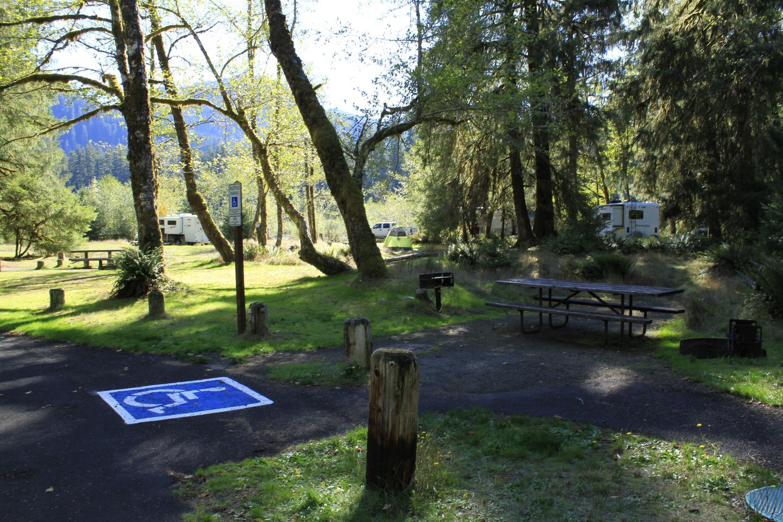 accessible campsite in hoh campgroundCampsite A1