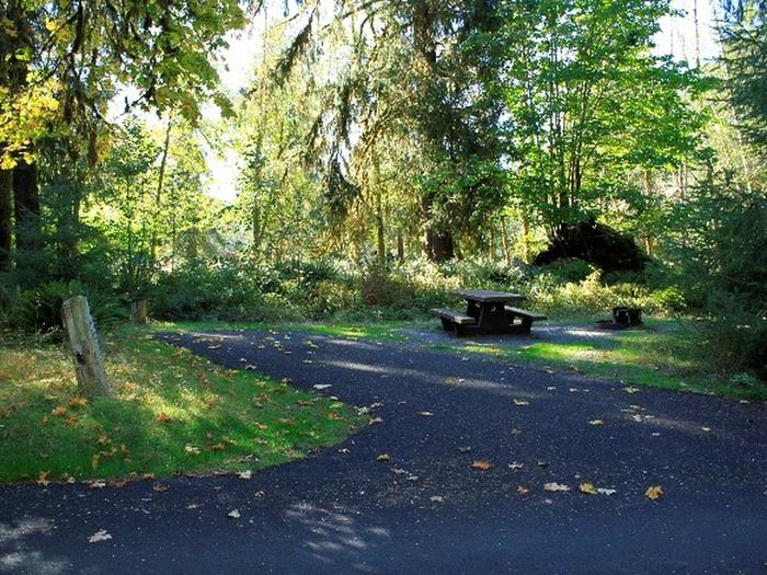 A4 View of parking area, picnic table, and fire ring