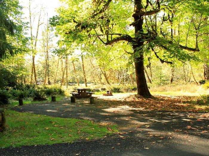 A5View of parking area, picnic table, fire ring, tent area