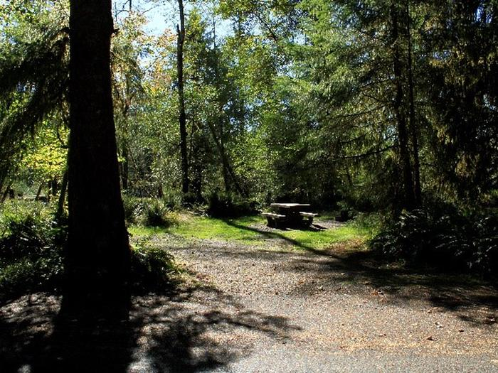 A7View of parking area, picnic table, fire ring, and tent area