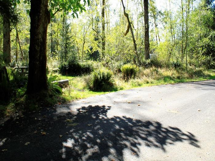 A9View of parking area and picnic table