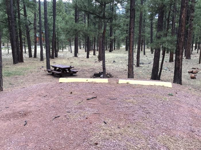 Site82 Table