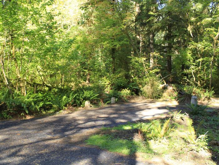 campsite parking areaB51