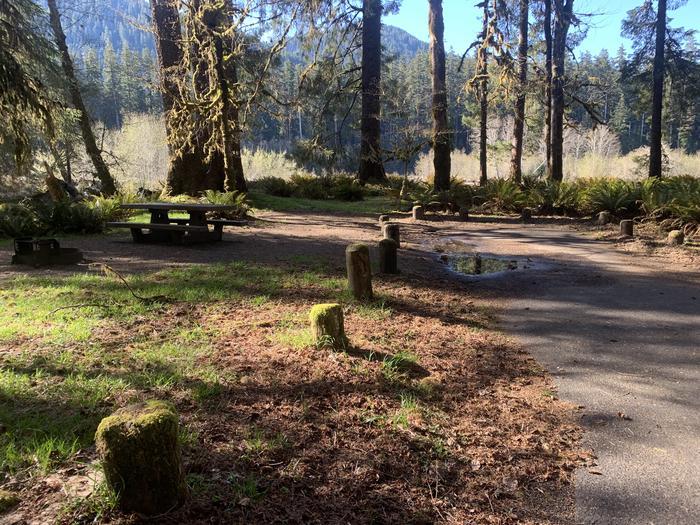 parking area campsiteC73