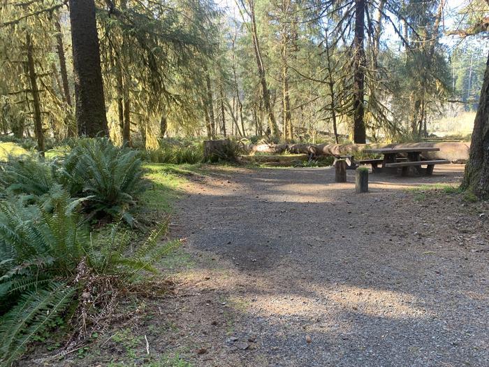 campsite parking areaC77