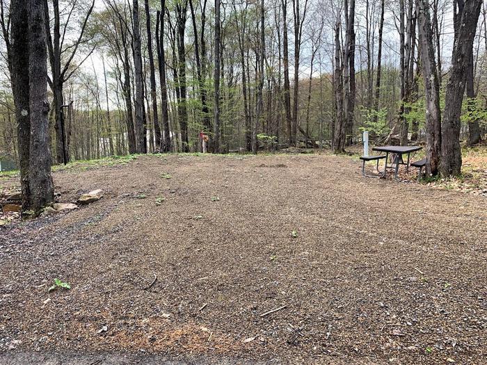 EB Camp Site 7Camp Site 7