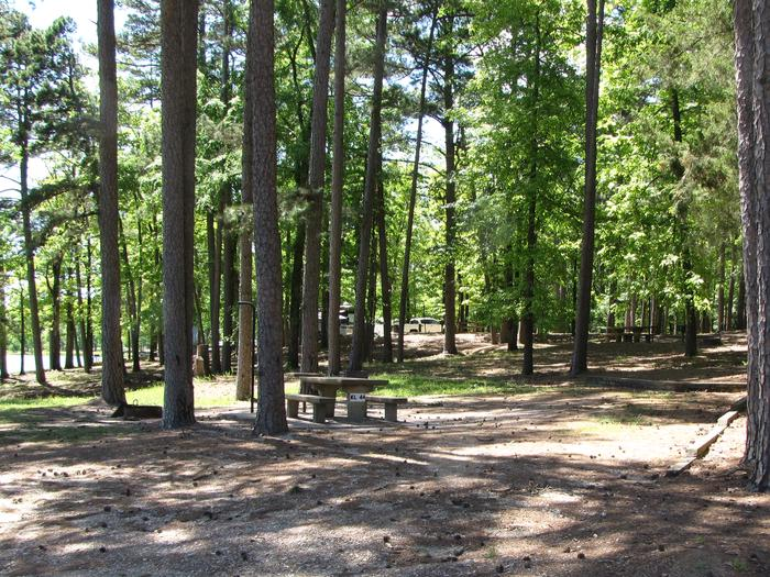 Campsite 44Kirby Landing campsite # 44