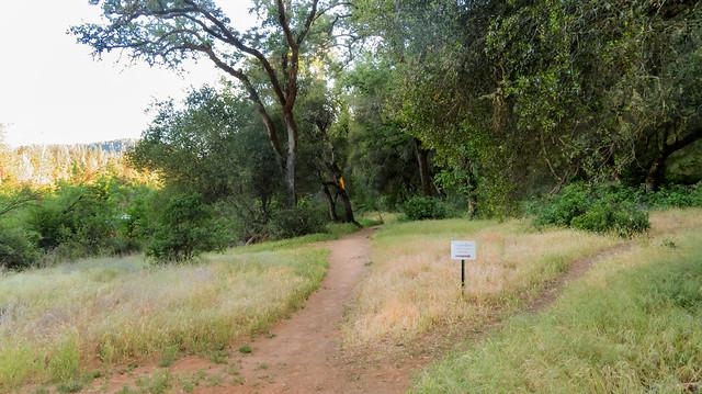 Greenwood Creek River Access Trail