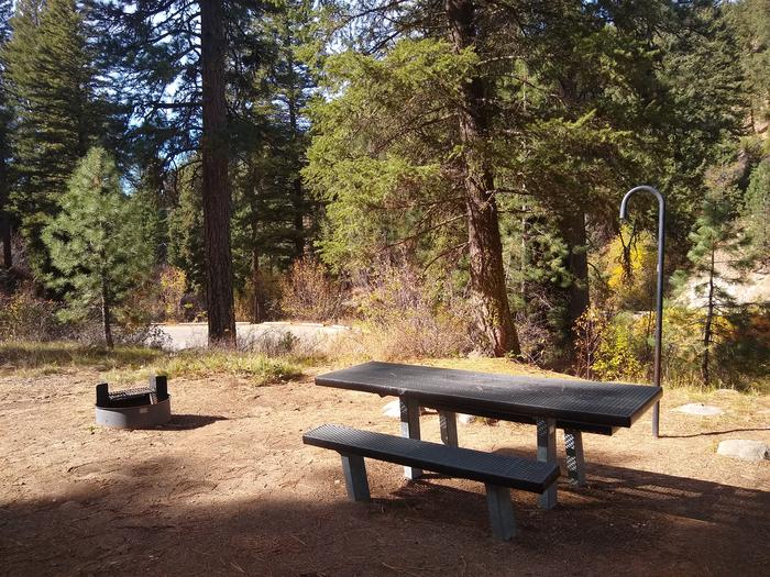 A picnic table, lantern hook, and campfire ring with trees and highway in the background.Some of the sites at Hayfork Group are relatively close to Highway 21, so some some traffic sounds are to be expected.