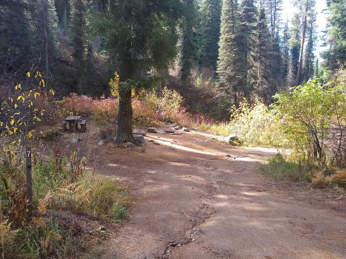 A small camp spot with an in-ground fire pit and picnic table.This spot is a short walk down the narrow dirt path from the other sites.  It features an in-ground campfire pit and picnic table.