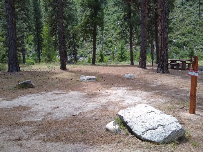 A single campsite surrounded by trees.Black Rock Site 11.