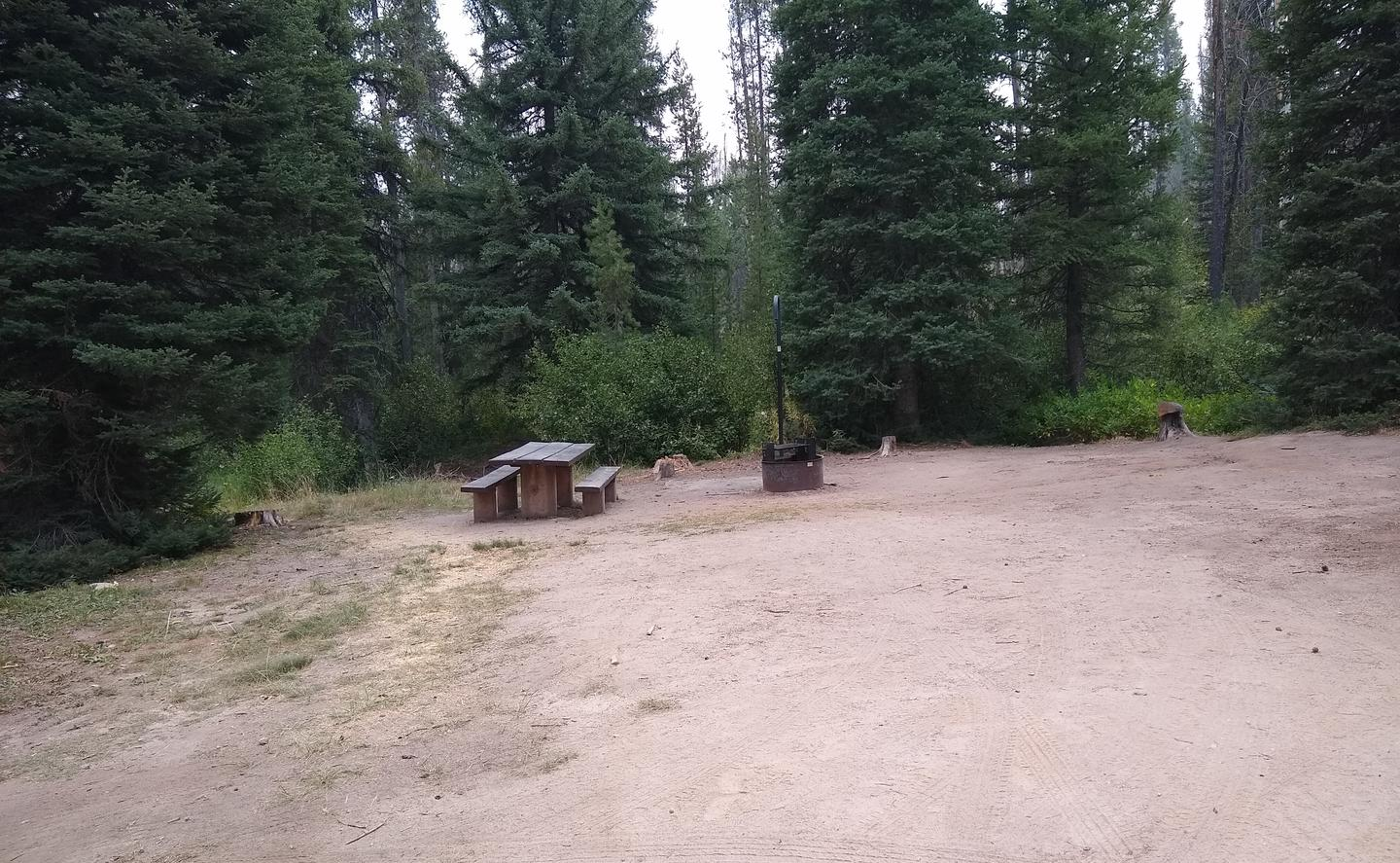 A wide spacious single campsite.Site 3 at Edna Creek Campground is very spacious and sunny.