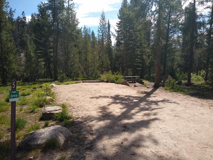 A long wide dirt driveway next to a single campsite.Site 5 with large driveway at Edna Creek Campground.