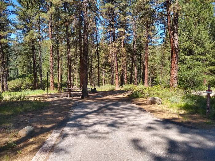 A double campsite surrounded by trees with a bordered driveway.Site 1A is a double site at Grayback Gulch.