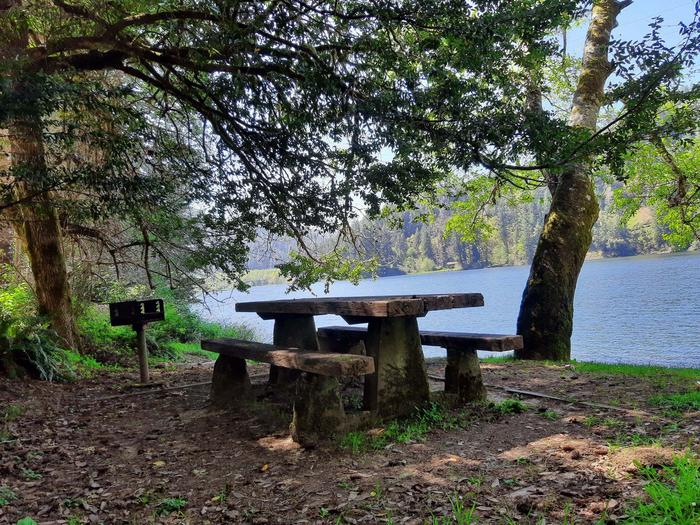 East Shore Day UseEast Shore Campground .5 miles from Loon Lake
