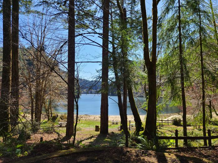 Loon Lake camp overview