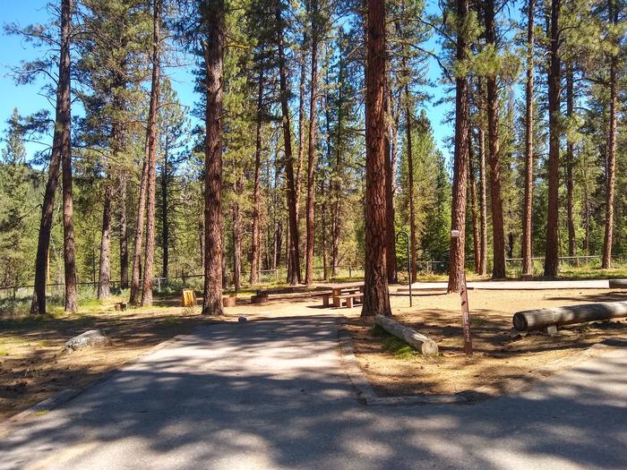 A paved driveway leading to a double campsite.Site 7A is a double site with a paved driveway.