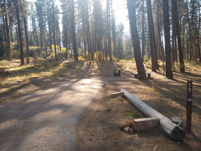 A paved driveway leading to a single campsite in the woods.Site 15 features a long paved driveway.