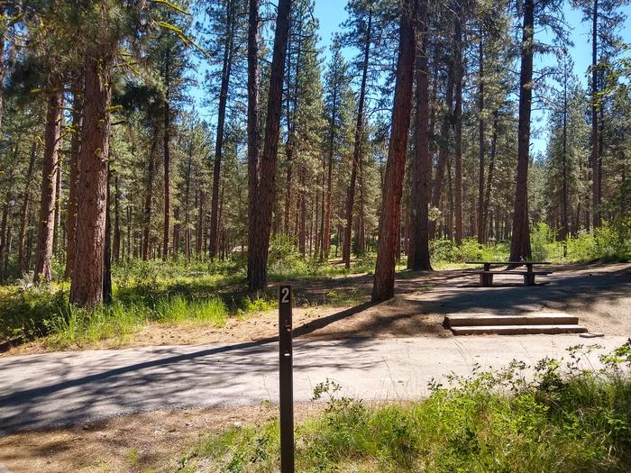 A single campsite in the woods.Site 2 at Grayback Gulch.